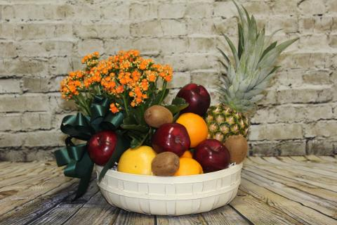 Fruit and Plant Basket