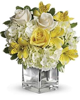 Teleflora\'s Sweetest Sunrise